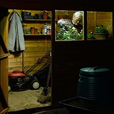 view through the window and door of a shed at night with lights on and a man watering plants by the window. Tools also visible