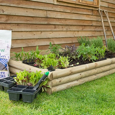 wooden raised bed kit from Forest Garden