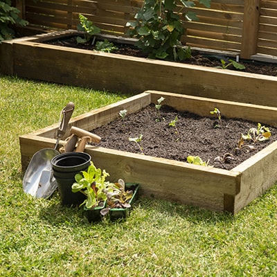 a compact wooden raised bed for allotments and gardens