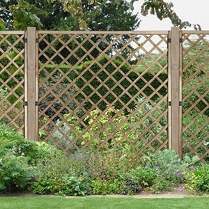 A wooden, diamond-shaped lattice fence panel with shrubs either side and a tree in the background.