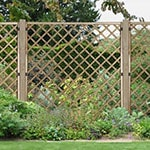 The Forest 5'11x5'11 Harrow Decorative Wooden Trellis Fence Panel, with trees in the background and plants and a lawn in the foreground.