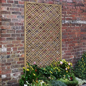 The Forest 6x3 Double Slatted Diamond Lattice fixed to a wall, with shrubs in the foreground.