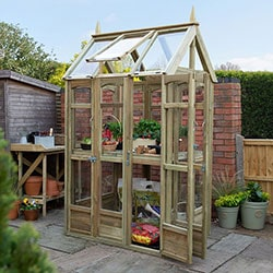 The 3x4 Forest Victorian Walkaround Greenhouse with Auto Vent, with door open, plants inside and situated on a patio.