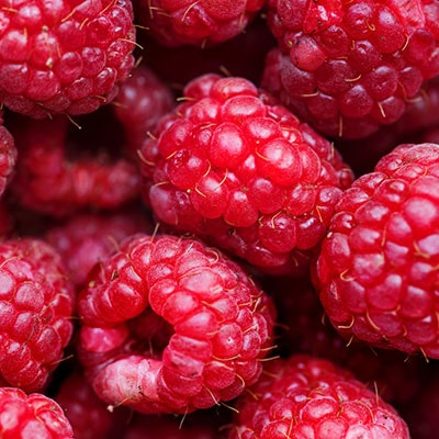 A close-up of some raspberries
