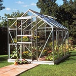 The 6'4x8'6 Halls Popular 68 Small Greenhouse, full of plants, situated on a lawn, at the end of a path, with its doors and vent open.