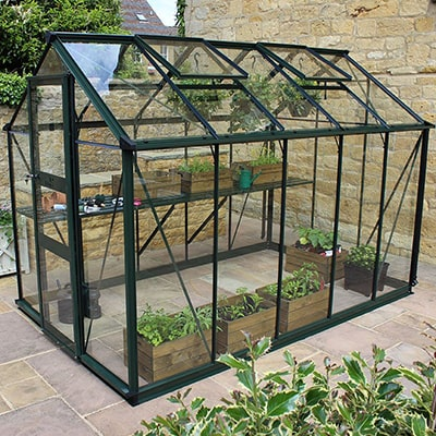 a 6x10 black-framed greenhouse, full pf plant containers