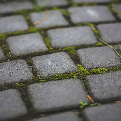 Moss covered cobblestones