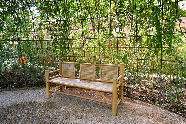 a bench under a living willow dome