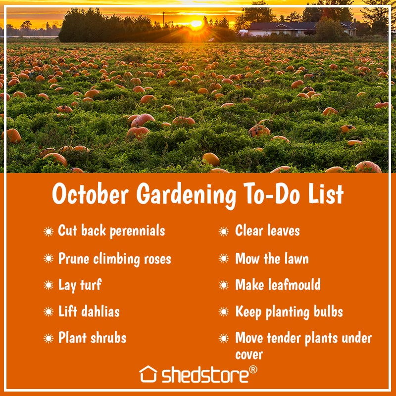 Garden To Do List for October