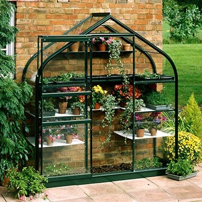 6x2 Halls Wall Greenhouse with curved roof
