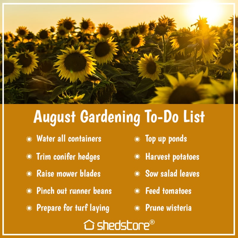 Garden To Do List for August