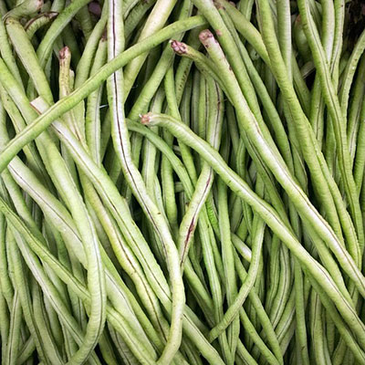 many French beans