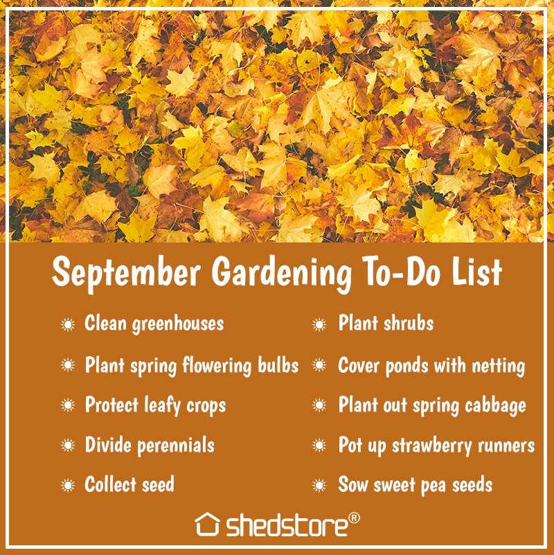 Garden To Do List for September