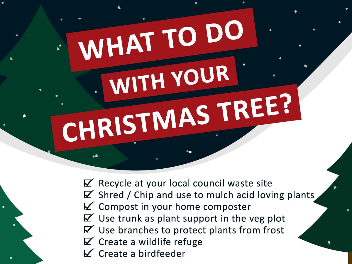 list of ideas for recycling a Christmas Tree