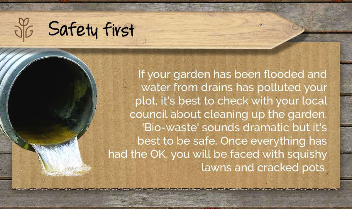 How to protect my garden from flood infographic