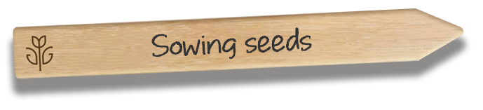 Sowing seeds videos
